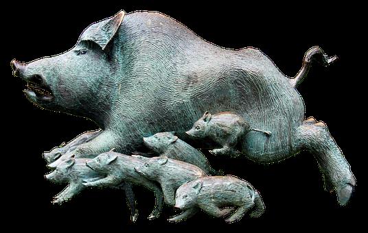 Wild Rotting Pig, Boar, Rotte, Pack, Little Pig