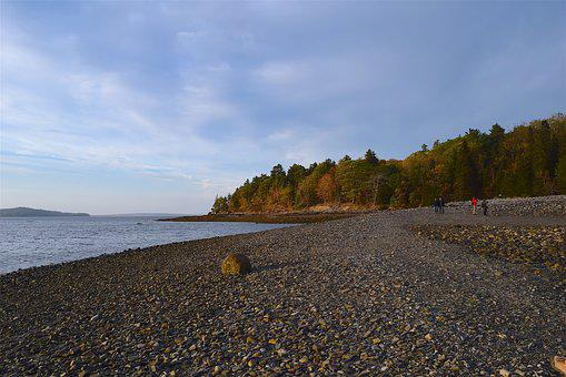 Sunset, Shore, Rocks, Ocean, Pine Trees, Maine, Nature