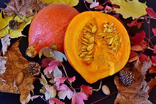 Hokkaido, Pumpkin, Squash, Still Life, Pumpkin Soup