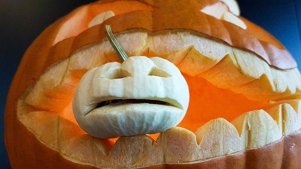 Pumpkin, Halloween, Halloweenkuerbis, Choose