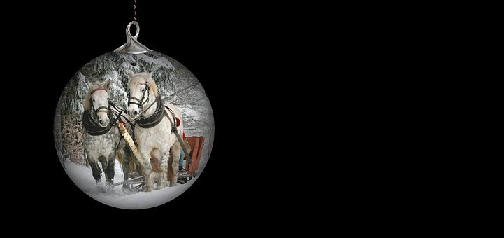 Christmas Ornament, Horses, Team, Horse