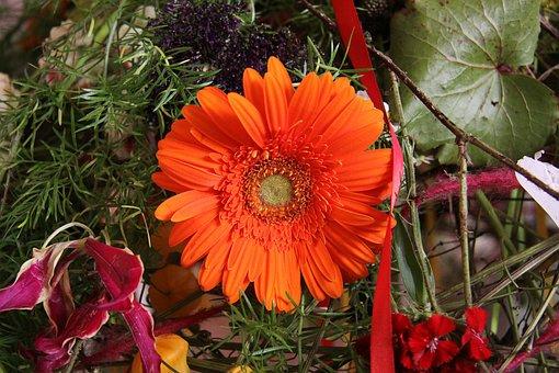 Floral Arrangement, Flowers, Gerbera, Orange, Blossom