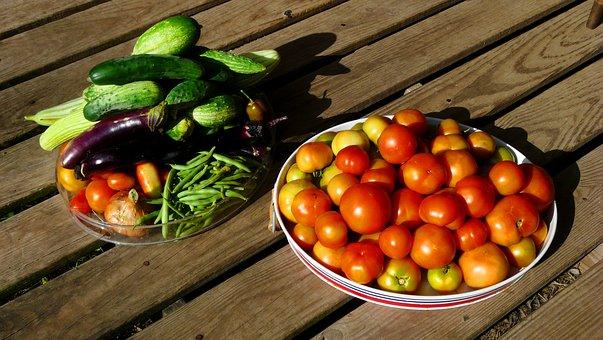 Harvest, Garden, Tomatoes, Cucumbers, Eggplant