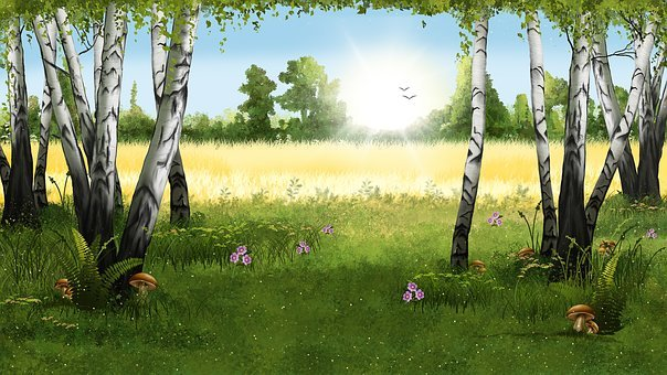 Landscape, Forest, Nature, Birches, Drawing, Mushrooms