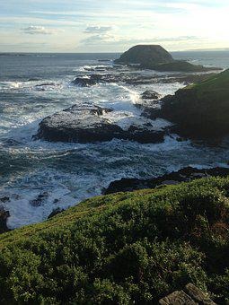 Coastline, Ocean, Nature, Coast, Landscape, Shore, Wave
