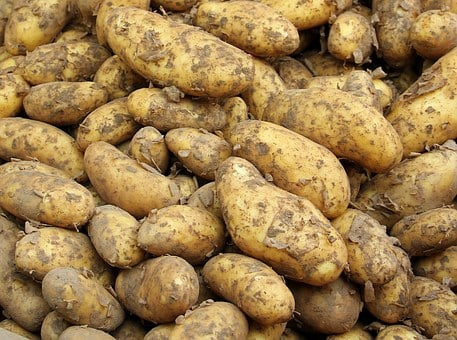 Potato, New Crop, Food, Young Potato, Healthy, Market