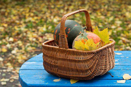 Autumn, Harvest, Pumpkin, Basket, Leaves, Yellow