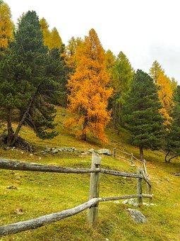 Autumn, Indian Summer, Golden Autumn, Autumn Mood