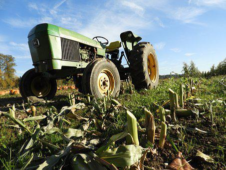 Tractor, Farm, John Deere, Corn, Harvest, Agriculture