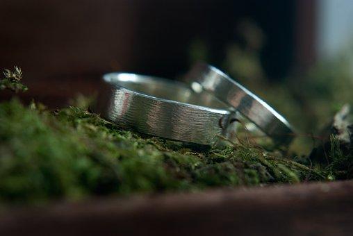 Love, Wedding, Rings, Moss, Romantic, Romance, Marriage