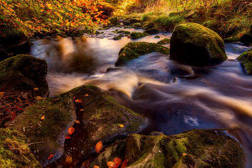Autumn, Valley Of Desolation, Yorkshire, Bolton Abbey