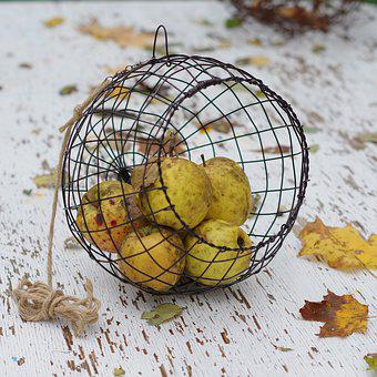 Apples, Fall, Basket, Wire Basket, Autumn, Country