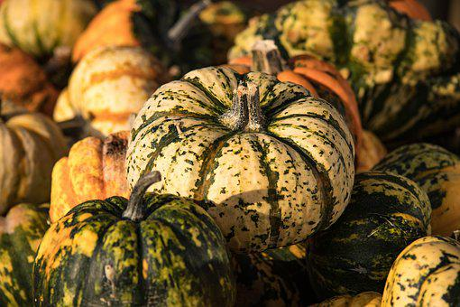 Pumpkin, Autumn, Pumpkins, Vegetables, Farmer's Market