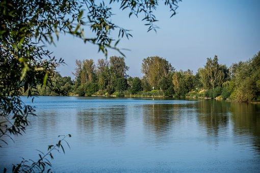 Lake, Water, Tree, Autumn, Landscape, Lagoon, View