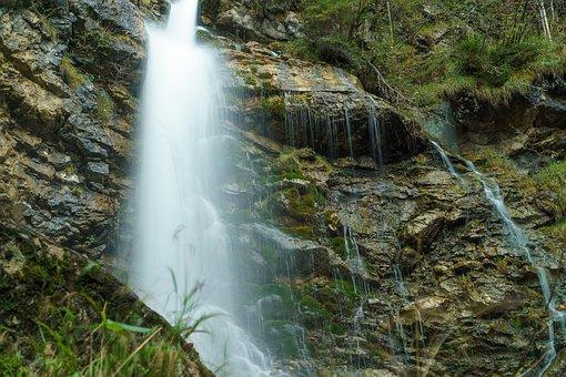 Foghorn, Wrinkle Bach, Tobel, Oberstdorf, Moss, Water