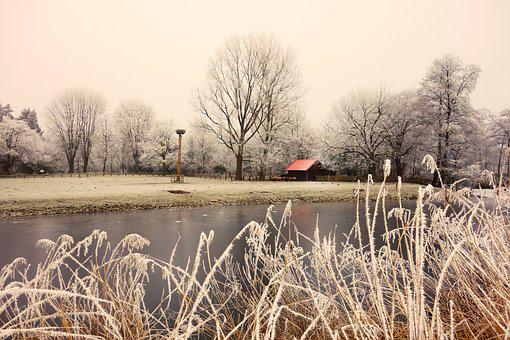 Reeds, Hoarfrost, Barn Red Roof, Stork Nest, Waterway