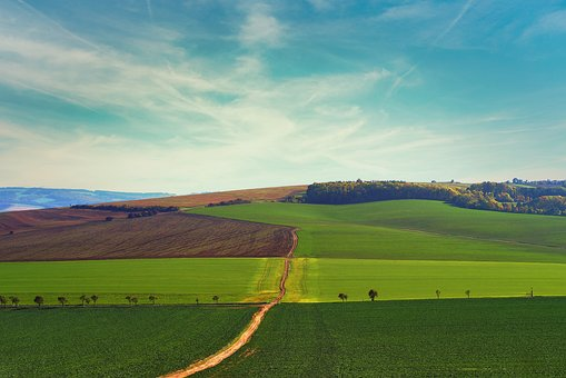 Landscape, Green, Blue, Nature, Sky, Field, Autumn