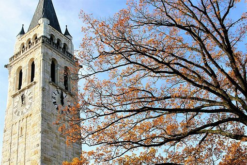 Tree, Sky, Clock, Park, Autumn, Yellow Leaves, Church