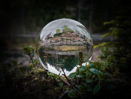 Glass Ball, Vignetting, Dark, Black, Moss, Mirroring