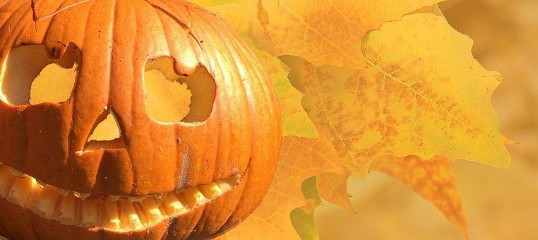 Halloween, Autumn, Pumpkin, Leaves, Pumpkin Face, Gourd