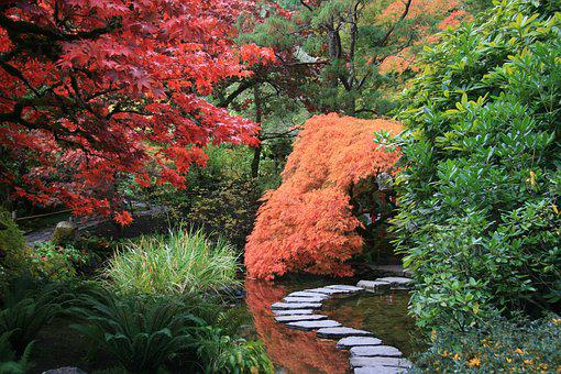 Japanese Garden, Path, Trees, Nature