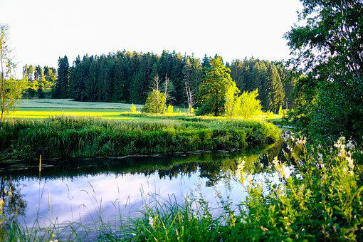 River, Green, Landscape, Meadow, Idyllic, Nature, Water