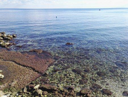 Sea, Water, Horizon, Clear Water, Rocks, Sicily, Summer