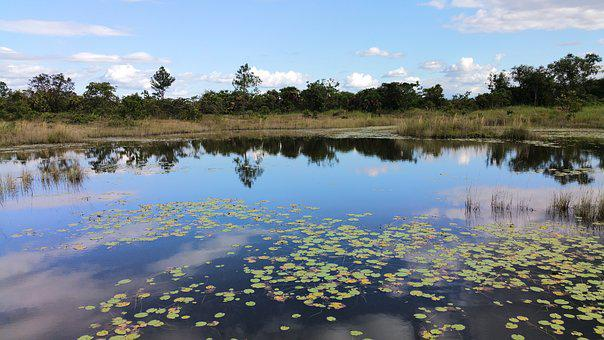Pond, Pool, Reflection, Lake, Nature, Water, Landscape