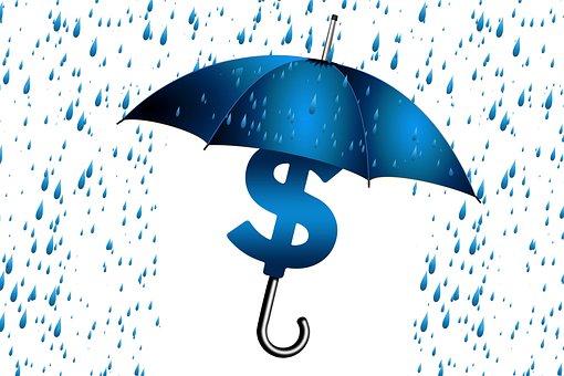 Umbrella, Economy, Sure, Idea, Rain, Dollar, Concept