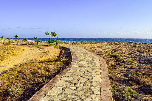 Path, Dirt Road, Landscape, Coastal Path, Palm Trees