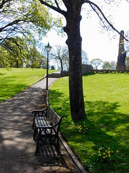 Bench, Park Bench, Wooden Bench, Lamp, Park
