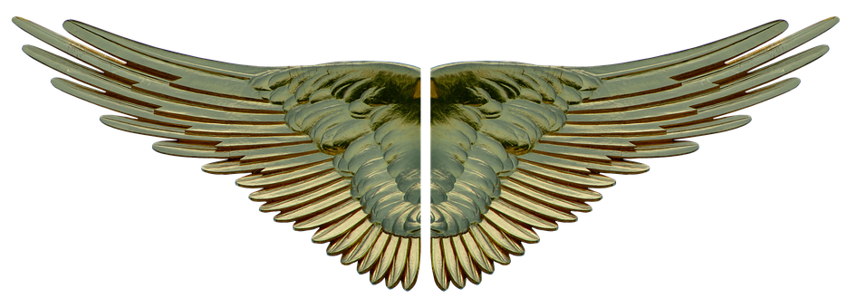 Wing, Gilded, Gold, Heavenly, Angel, Art, Statue