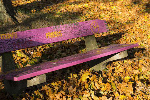 Autumn, Leaves, Bank, Bench, Park Bench, Pink, Art