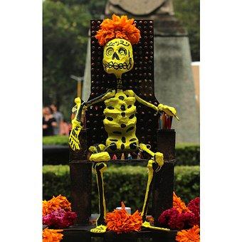 Offering, Colors, Dead, Popular Festivals, Color