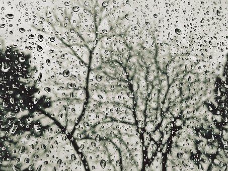 Rain, Raindrop, Drop Of Water, Nature, Beaded, Weather