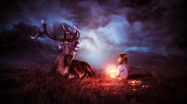 Night, Sky, Deer, Nature, Wildlife, Animal, Child