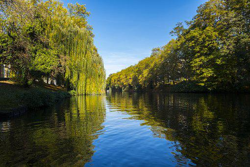 River, Water, Neckar, Autumn, Trees, Bank, Mirroring