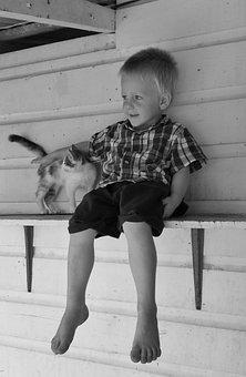 Boy, Cat, Pet, Mischievous, Happy, Shelf
