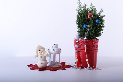 Stars, Rattan, Pots, Flowerpots, Plastic, Decorative