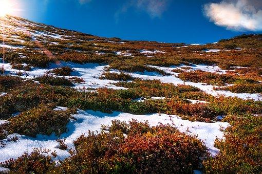 Landscape, Nature, Autumn, Sun, Sky, Farbenspiel, Mood