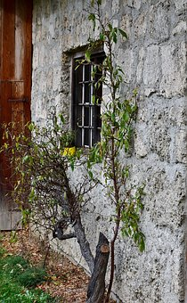 Facade, Old, Wall, Architecture, Window, Building