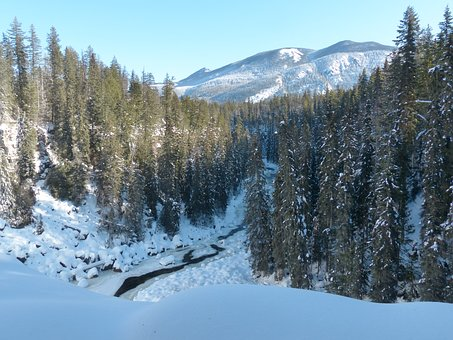 Winter, Ice, Snow, Cold, Season, Nature, Landscape