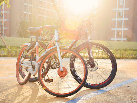 Campus, Bike, Sunshine, The Scenery