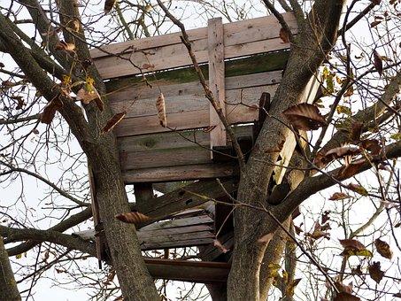 Treehouse, Weathered, Wood, Old, Tree, Build, Romantic