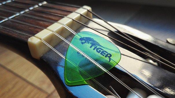 Guitar, Plectrum, Tiger, Handle, Strings, Music