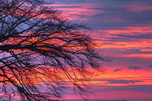 Morgenrot, Clouds, Tree, Sunrise, Sky, Morgenstimmung