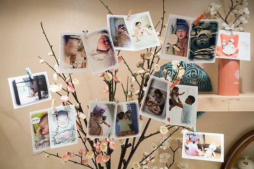 First Birthday, Birthday, Baby, Party, Photos, Tree