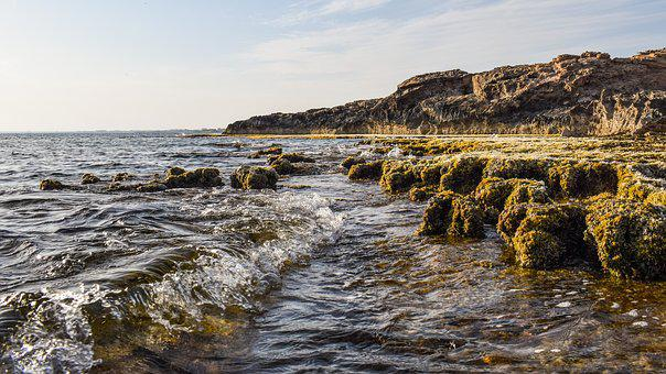 Wave, Rocky Coast, Nature, Sea, Landscape, Coastline