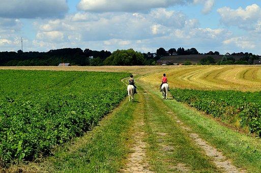 Ride, Riding, Equestrian, Reiter, Landscape, Horses