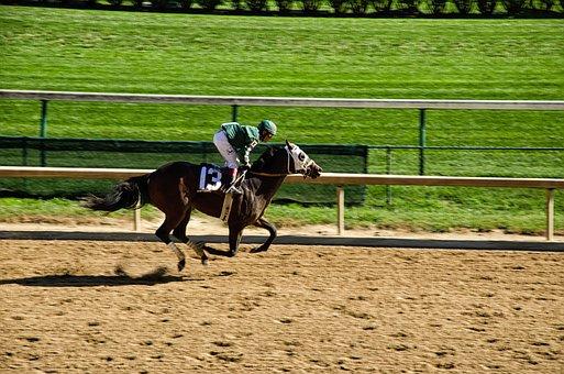 Kentucky, Louisville, Horse Racing, Horse, Racecourse